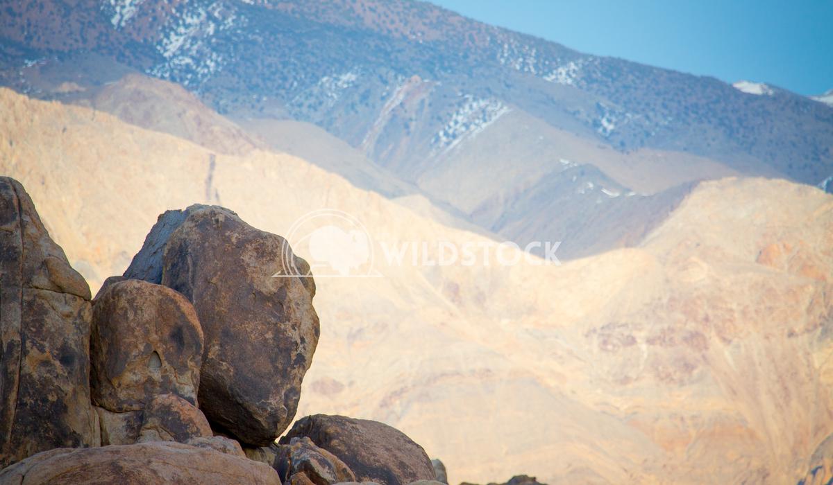Foreground Boulder Bash Henry McCluster