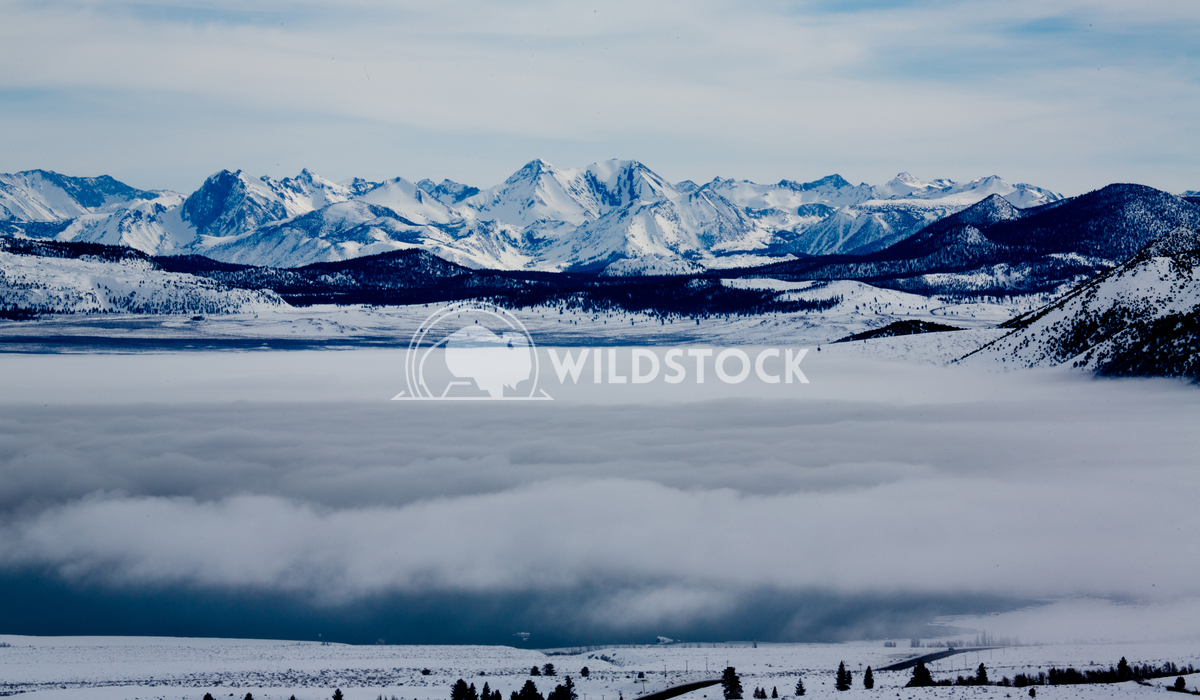 Mono Lake Winter Fog Henry McCluster