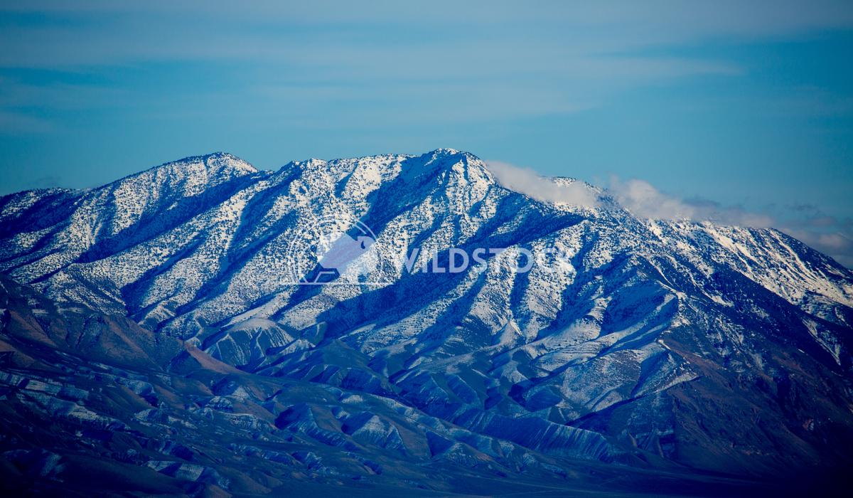 Vortex Nevada Blue Henry McCluster