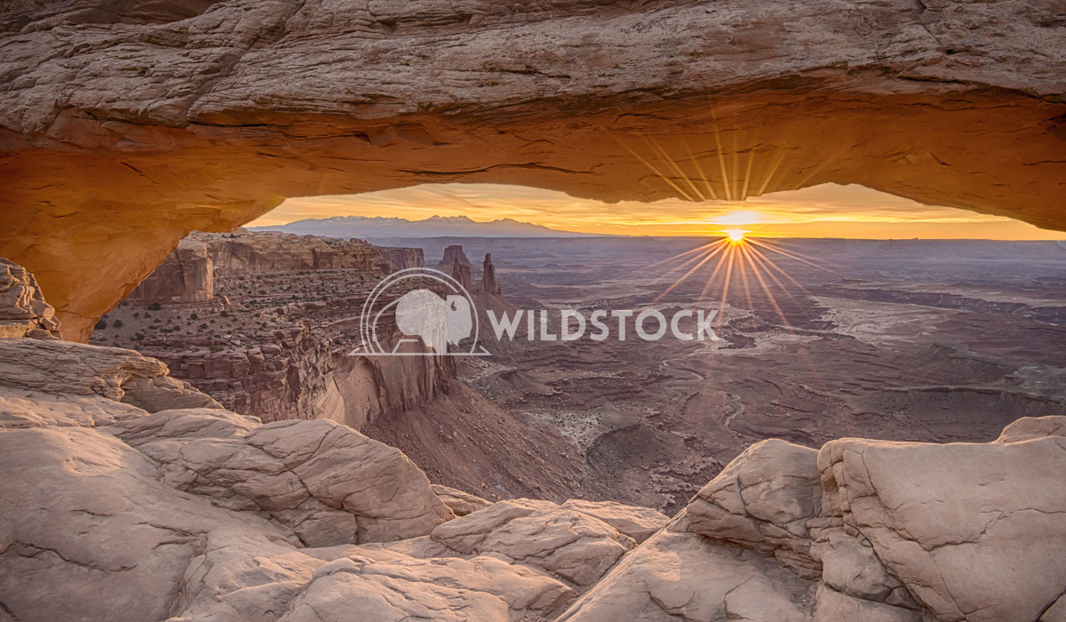 Sunrise at Mesa Arch Stacy White