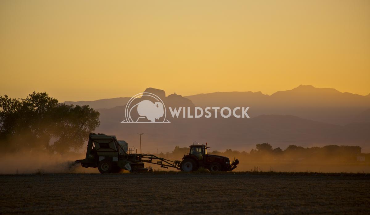 Farming the Day Through Terry Waln