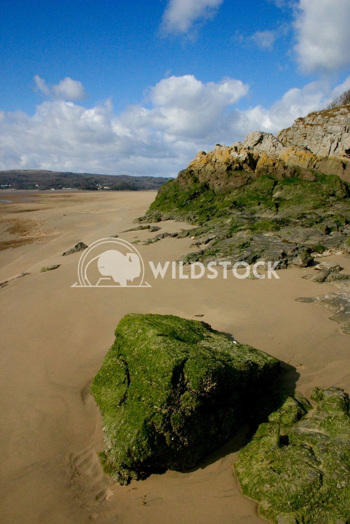 Arnside Sands Adam Clayton