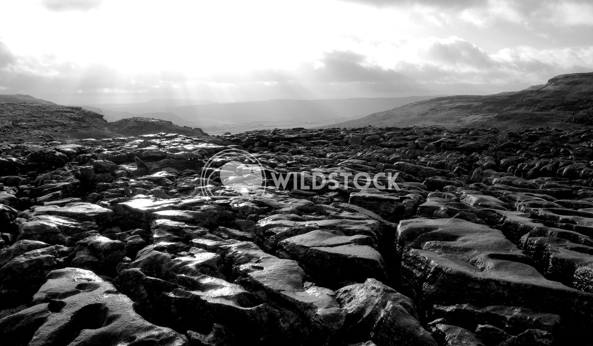 """Limestone Pavement - Yorkshire Dales National Park Adam Clayton This is part of the rare limestone """"pavement"""" rock forma"""