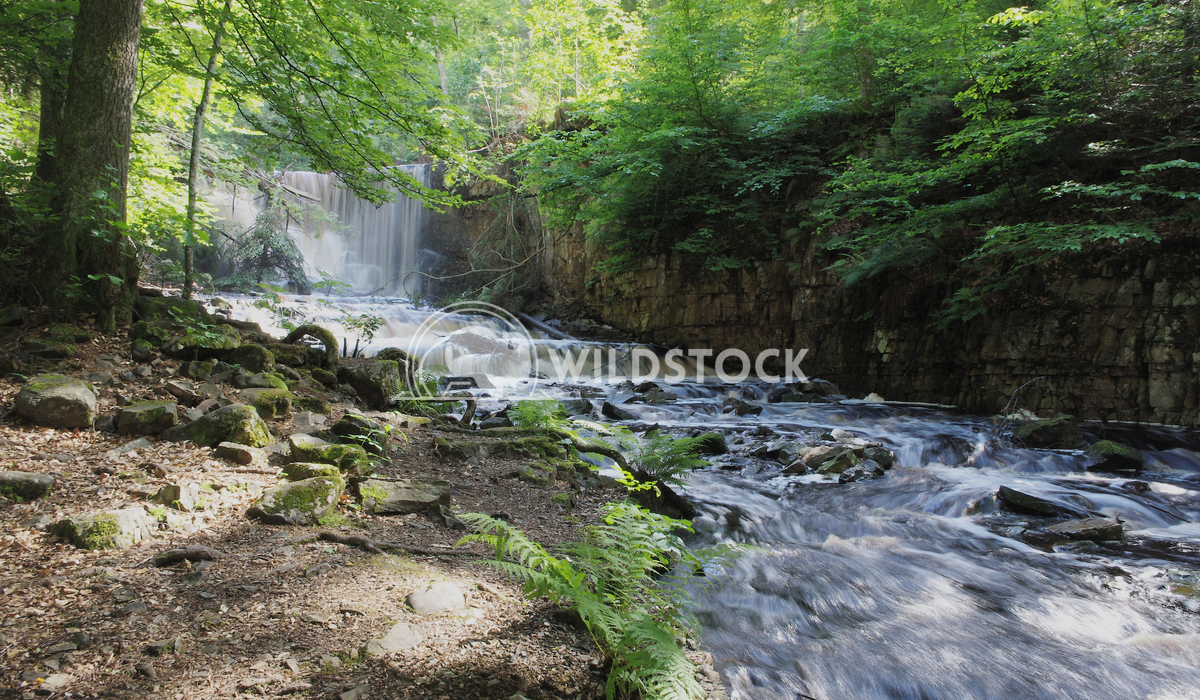 Living Water Lars Fricke Found this wonderful lively waterfall in a Swedish forest near the geat Vaenern Lake. The sun w
